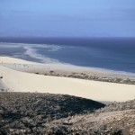Fuertenventura. Small but deliciously formed.