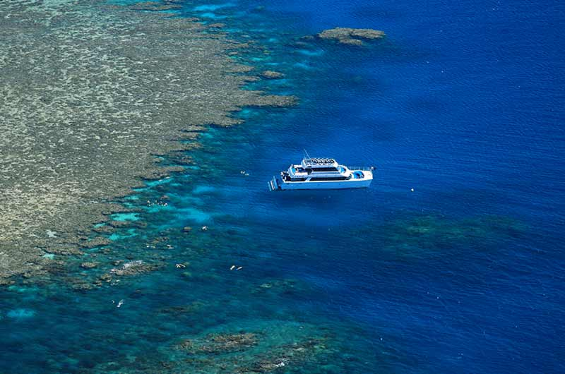 gallery-mid-calypso-outer-reef