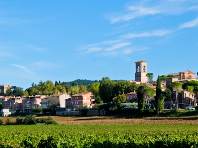 torgiano-with-vineyards