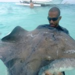 Swimming with Stingrays in Grand Cayman