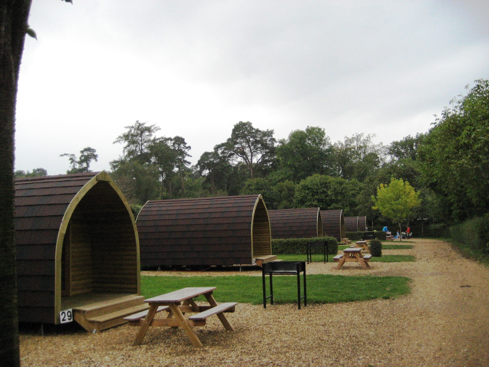 Sandy Balls New Forest Camping | TripReporter
