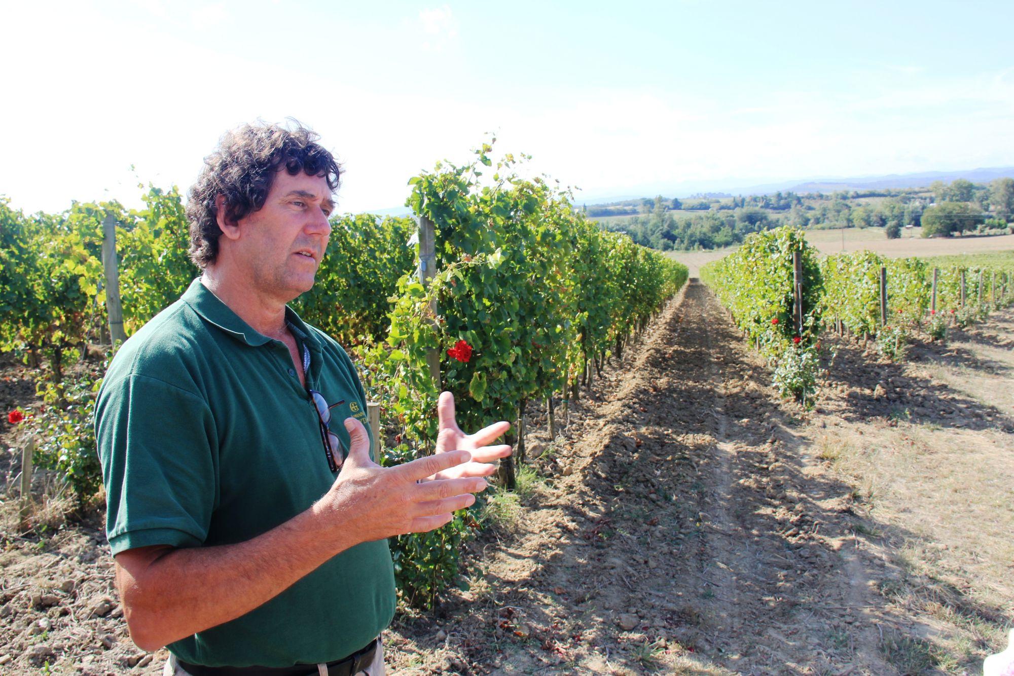 Languedoc wine tasting 050