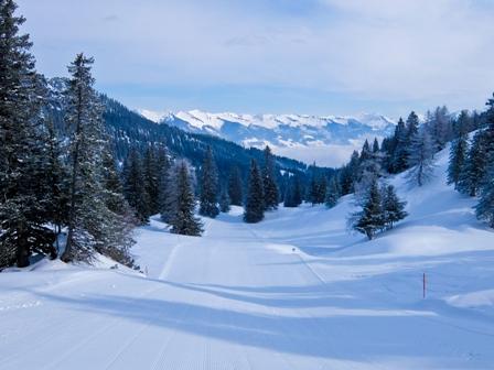Brand Mountain Virgin Snow