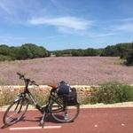 Menorca by bike
