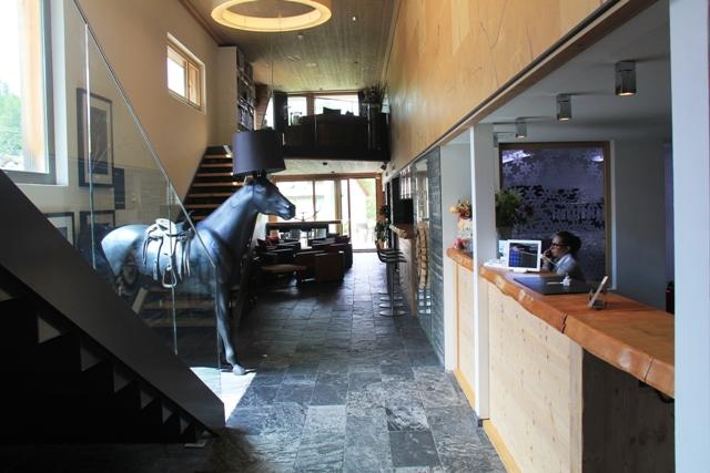 Nira horse