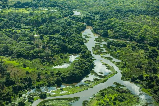 co_pantanal0061