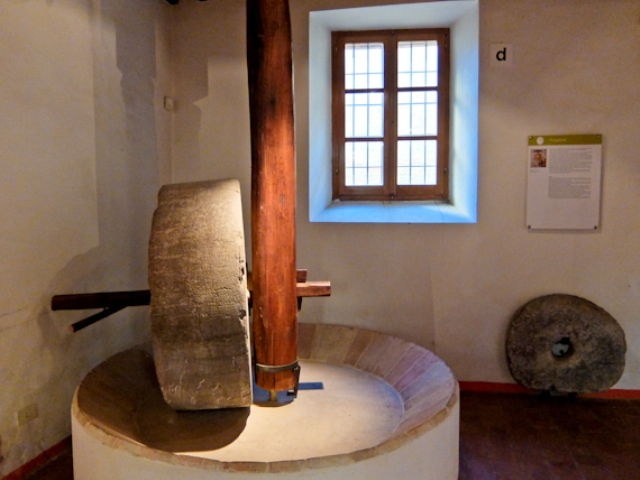 olive-oil-museum