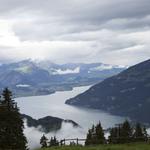 Exploring Switzerland's Jungfrau Region